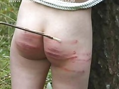 Spanking pics and video