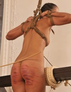A strong caning for a young Lady, pic #6