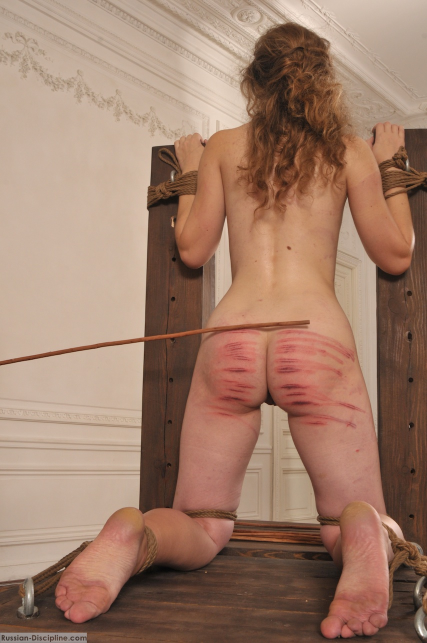 Bdsm personals caning Femdom Aurora Varla-caned to Tears - Videos - FetishTheatre