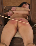 Bound for a strong caning, pic #10